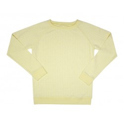 Sweat Axel jaune print plumes
